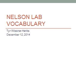 nelson lab vocabulary