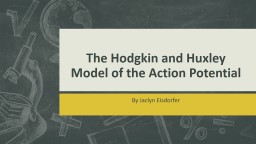 The Hodgkin and Huxley Model of the Action Potential