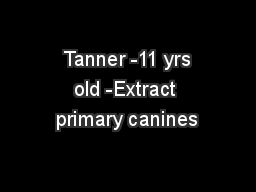 Tanner -11 yrs old -Extract primary canines