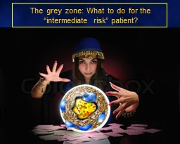"""The grey zone: What to do for the """"intermediate risk"""" patient?"""
