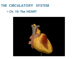 THE CIRCULATORY SYSTEM Ch. 18  The HEART