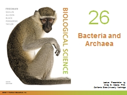 0 Bacteria and  Archaea Chapter 26 Opening Roadmap.