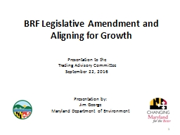 1 BRF Legislative Amendment and