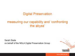 Digital  Preservation measuring our capability and 'confronting the
