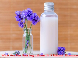 What Are The Best Ingredients In A Natural Shampoo