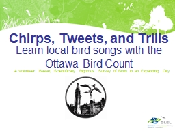 Learn local bird songs with the Ottawa Bird Count