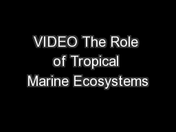 VIDEO The Role of Tropical Marine Ecosystems
