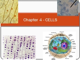 Chapter 4 - CELLS Cell Lab