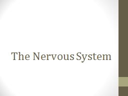 The Nervous System The Nervous System