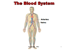 1 The Blood System The Blood System