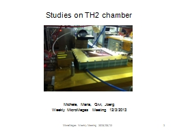 Studies on TH2 chamber Michele, Maria,