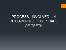 PROCESS  INVOLVED  IN DETERMINING  THE SHAPE OF TEETH