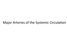 Major Arteries of the Systemic Circulation