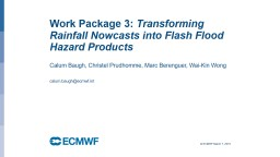 Work Package 3:  Transforming Rainfall Nowcasts into Flash Flood Hazard Products