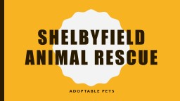 Shelbyfield Animal Rescue