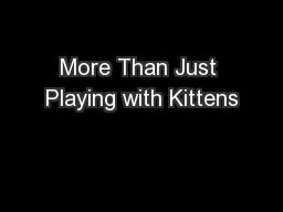 More Than Just Playing with Kittens