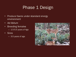 Phase 1 Design Produce fawns under standard energy environment