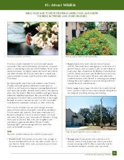 FloridaFriendly Landscaping TM Publication Florida is a state renowned for its diverse and unique ecosystems