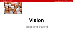 Vision Eggs and Beyond     Eggs