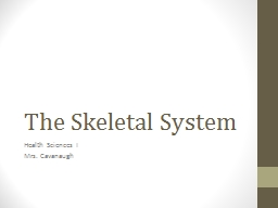 The Skeletal System About the Bones…