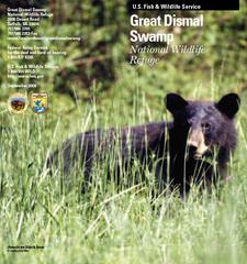 US Fish  Wildlife Service Great Dismal Swamp National