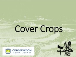Cover Crops  What  Are Cover Crops?