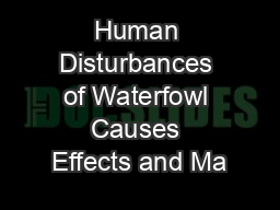 Human Disturbances of Waterfowl Causes Effects and Ma