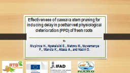 Effectiveness of cassava stem pruning for inducing delay in postharvest physiological deterioration
