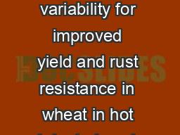 Mutation-induced variability for improved yield and rust resistance in wheat in hot irrigated envir