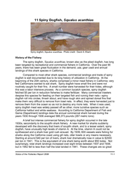 Status of the Fisheries Report    Spiny Dogfish Squalu