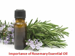 Importance of Rosemary Essential Oil