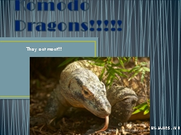 Komodo Dragons!!!!! They eat meat!!!