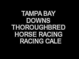 TAMPA BAY DOWNS THOROUGHBRED HORSE RACING  RACING CALE