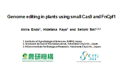 Genome editing in plants using small Cas9 and FnCpf1