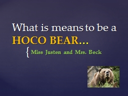 What is means to be a  HOCO BEAR