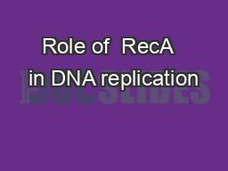 Role of  RecA  in DNA replication
