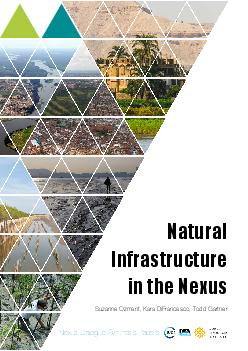Nexus Dialogue Synthesis PapersNatural Infrastructure in the NexusSuza