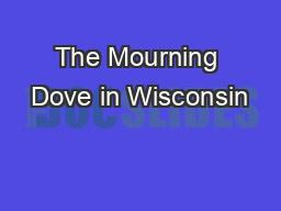 The Mourning Dove in Wisconsin