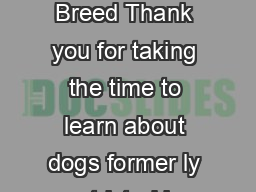 Dogs formerly known as Restricted Breed Thank you for taking the time to learn about dogs former ly restricted by breed in the City of Edmonton