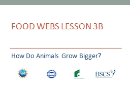 Food Webs Lesson 3b How Do Animals Grow Bigger