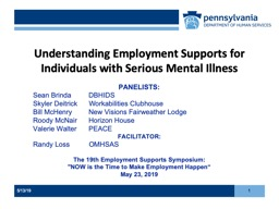 Understanding Employment Supports for Individuals with Serious Mental Illness
