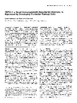 The Journal of Neuroscience March 1 1996 7651770l 779 CEPU1 a