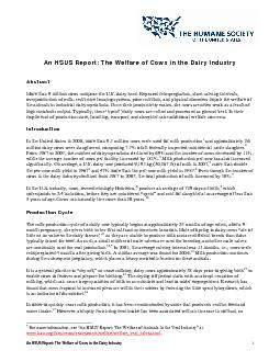An HSUS Report The Welfare of Cows in the Dairy Industry