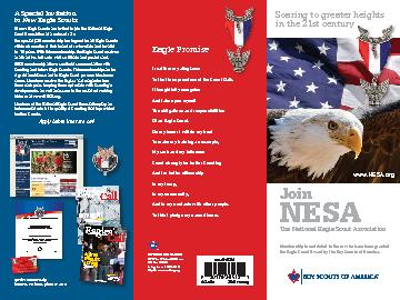 What Is NESAThe National Eagle Scout Association NESA is a fellowsh