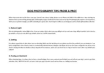 DOG PHOTOGRAPHY TIPS FROM A PRO!
