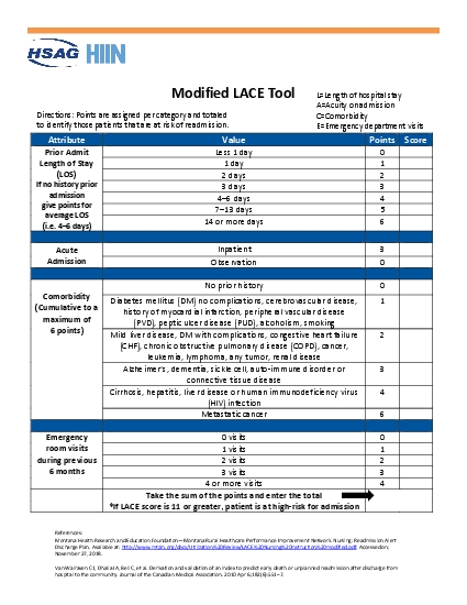 Modified LACE ToolDirections Points are assigned per category and tota