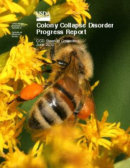 United States Department of Agriculture Agricultural Research Service Colony Collapse Disorder Progress Report CCD Steering Committee June  Mention of trade names or commercial products in this report