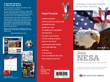 What Is NESAThe National Eagle Scout Association NESA is a fellowship