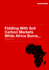Fiddling With Soil Carbon Markets While Africa Burns