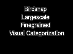 Birdsnap Largescale Finegrained Visual Categorization